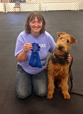 Airedale Terrier Dollar (Euro) von Erikson - Wesenstest  in den USA
